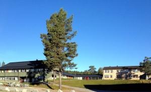 School in Rauland